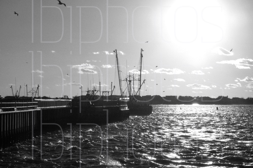 Fishing Boats at Sunset (BW)