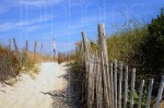 Dunes 76th Street, Harvey Cedars (Color)
