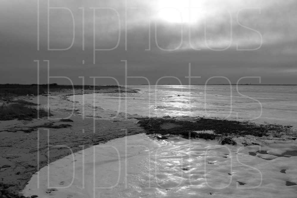 Holgate Icy Bay (BW)
