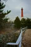 Snowy Lighthouse 1 (Color)