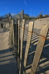 Great Wall of Dune Fence (Color)
