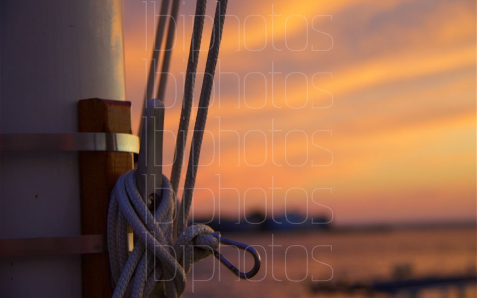 Flag Pole Lines 01