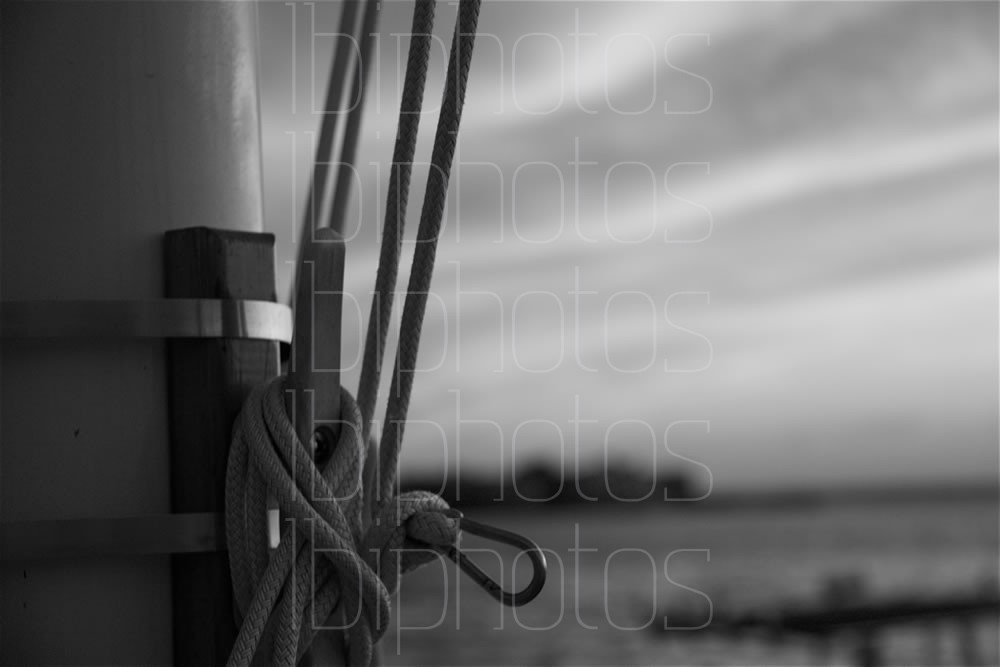 Flag Pole Lines 01 (BW)