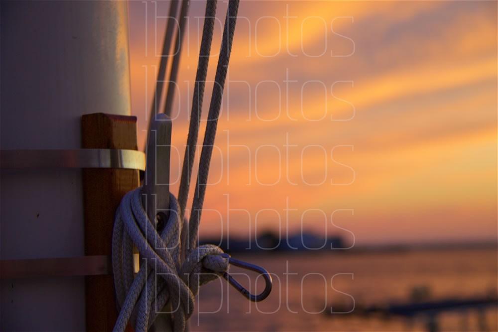 Flag Pole Lines 01 (Color)
